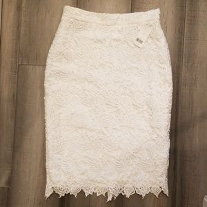 Banana Republic Lace Pencil Skirt size 4